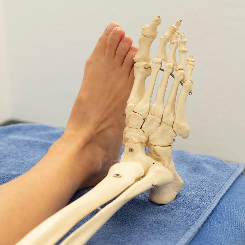 Manuelle-Therapie-Erlangen-Physiotherapie